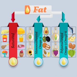 The recommended ratio of fats